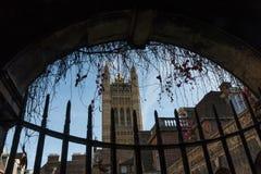 Inre domstol av den Westminster abbotskloster med Victoria Tower i bakgrunden Royaltyfri Fotografi