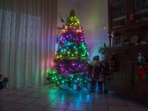 Inre för julnatten med regnbågen tänder julträdet Royaltyfri Bild
