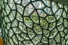 Inre 4 för Shanghai naturhistoriamuseum arkivbilder