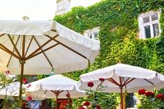Inre för sommargatakafét med det vita paraplyet i grön stad parkerar, utsmyckat med blommor och dekorativa beståndsdelar arkivbild