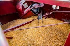 Inre kommersiell majslantbrukskördetröska royaltyfri foto