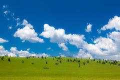 inre liggande mongolia för grässlätt Fotografering för Bildbyråer