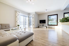 Inre modern vardagsrum med trägolvet arkivbilder