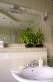 inre modernt för badrum royaltyfri fotografi