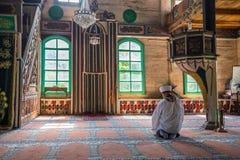 Inre sikt av Artin, Macahel, Camili Camii& x28; mosque& x29; Royaltyfri Foto
