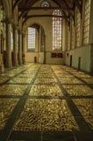 Inre sikt av den gotiska kyrkan med konstnärlig störning i Amsterdam arkivbilder