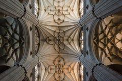 Inre sikt av den Salamanca domkyrkan Arkivbilder