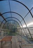 Inre tomt växtgräsplanhus Arkivbild