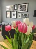 Inre: Tulpan i en livingroom Arkivbild