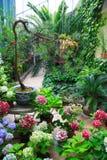Inre wintergarden Arkivbild
