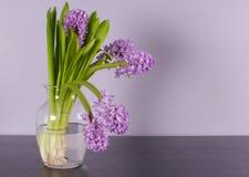 Inredesignen med den lila väggen och lilor blommar royaltyfria bilder