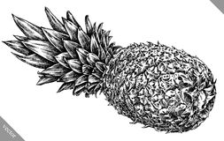 Inrista drog grafiska illustrationen för ananas handen Royaltyfria Foton