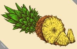 Inrista drog grafiska illustrationen för ananas handen Arkivfoto