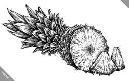 Inrista drog grafiska illustrationen för ananas handen Arkivfoton