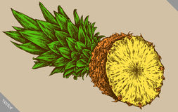Inrista drog grafiska illustrationen för ananas handen Royaltyfri Fotografi