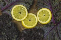 Insalata affettata del cavolo e del limone su fondo di legno Fotografie Stock Libere da Diritti