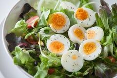 Insalata, alimento sano Immagine Stock Libera da Diritti