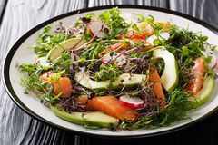 Insalata appena preparato del pesce rosso, dell'avocado, del ravanello e di una miscela di micro primo piano verde su un piatto o fotografia stock