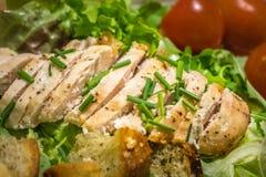 Insalata arrostita del petto di pollo Immagini Stock