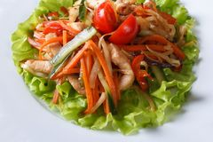 Insalata calda con il pollo arrostito e le verdure macro Immagini Stock