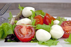 Insalata Caprese. Tomato and mozzarella with lettuce on a white plate Stock Images