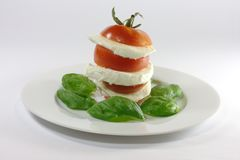 Insalata caprese. Tomatoes, mozzarella and basil on a plate Royalty Free Stock Photography