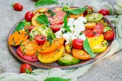 Insalata colorata del pomodoro con la mozzarella ed il basilico del formaggio fotografia stock libera da diritti