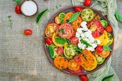 Insalata colorata del pomodoro con la mozzarella ed il basilico del formaggio immagine stock
