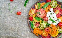 Insalata colorata del pomodoro con la mozzarella ed il basilico del formaggio fotografie stock libere da diritti