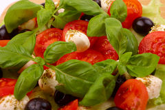 Insalata con basilico, la mozzarella, le olive ed il pomodoro Immagini Stock