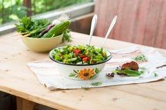Insalata con gli ortaggi freschi e la lattuga Fotografie Stock Libere da Diritti