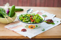 Insalata con gli ortaggi freschi e la lattuga Fotografia Stock