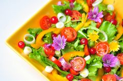 Insalata con i fiori, la frutta e le verdure Immagini Stock Libere da Diritti