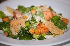 insalata con il pesce arrostito Immagine Stock