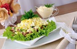 Insalata con il prosciutto, cetriolo, uovo sotto i chip immagine stock libera da diritti