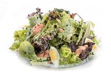 Insalata con il salmone e le verdure con la salsa dell'ostrica Pranzo asiatico immagini stock