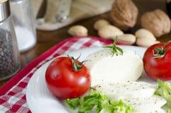 Insalata con la mozzarella, i pomodori ed alcuni ingredienti Fotografia Stock Libera da Diritti
