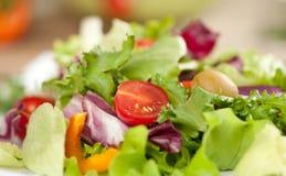 Insalata con le verdure Immagine Stock