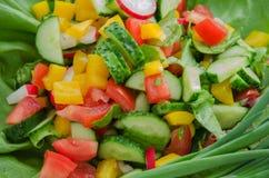 Insalata con le verdure Fotografia Stock Libera da Diritti