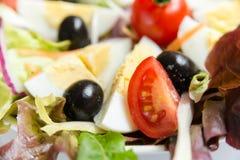 Insalata con le verdure miste e le uova Immagine Stock Libera da Diritti