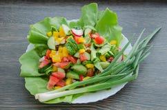 Insalata con le verdure sul piatto bianco Immagine Stock Libera da Diritti