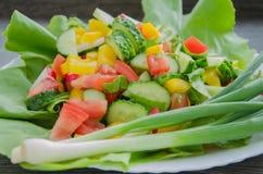 Insalata con le verdure sul piatto bianco Fotografie Stock
