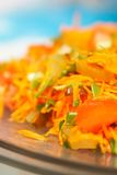 Insalata coreana della carota Fotografia Stock Libera da Diritti