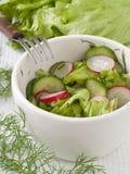 Insalata dal cetriolo, dal ravanello e dall'insalata Fotografie Stock