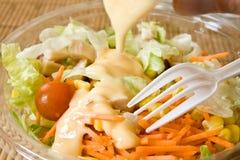 Insalata degli alimenti a rapida preparazione Immagine Stock