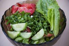 Insalata dei pomodori e dei cetrioli con le erbe Fotografie Stock Libere da Diritti