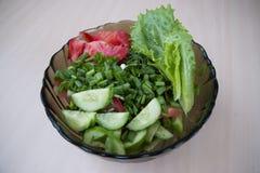 Insalata dei pomodori e dei cetrioli con le erbe Fotografia Stock Libera da Diritti