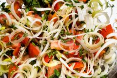 Insalata dei porri, dei peperoni dolci e dei pomodori Immagine Stock