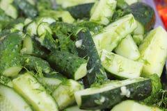 Insalata dei verdi freschi con i cetrioli Fotografia Stock Libera da Diritti
