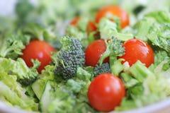 Insalata del pomodoro del broccolo Fotografia Stock